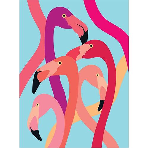 Paradise of Flamingos