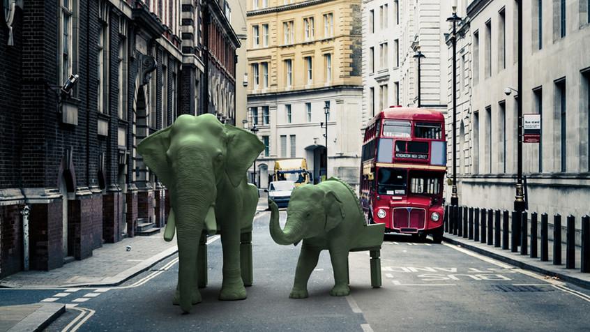 Elephants-London-950