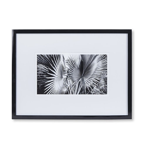Black & White Palm Leaves - C (Kelly Hoppen Collection)