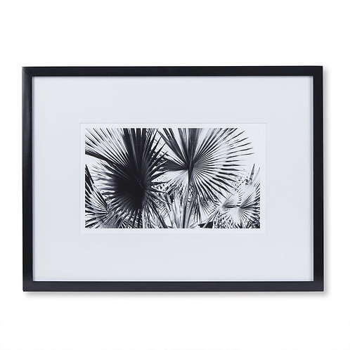 Black & White Palm Leaves - A (Kelly Hoppen Collection)