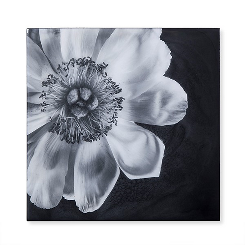 Black & White Flower - Epoxy / D (Kelly Hoppen Collection)