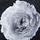 Thumbnail: Black & White Flower - Epoxy / B (Kelly Hoppen Collection)