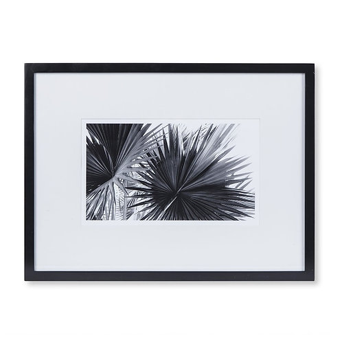 Black & White Palm Leaves - B (Kelly Hoppen Collection)