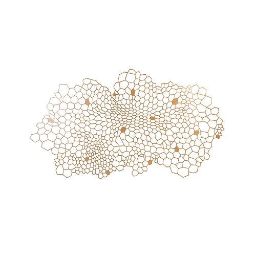 Honeycomb Wall Art (多款可選)
