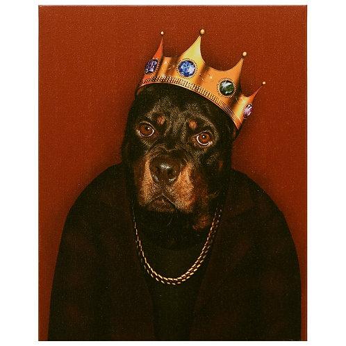Big Doggie (Pets Rock Collection)