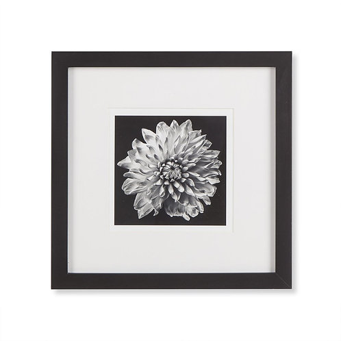 Black Blossom C (Kelly Hoppen Collection)
