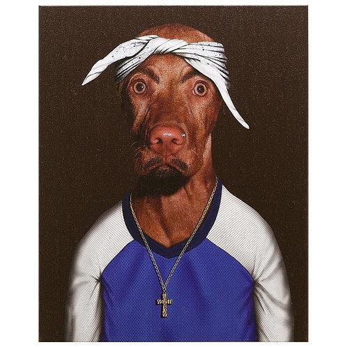Two Rap (Pets Rock Collection)