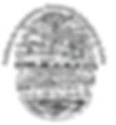 Logo IIDISA.png