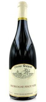 Bourgogne Pinot Noir 2013, Olivier Guyot