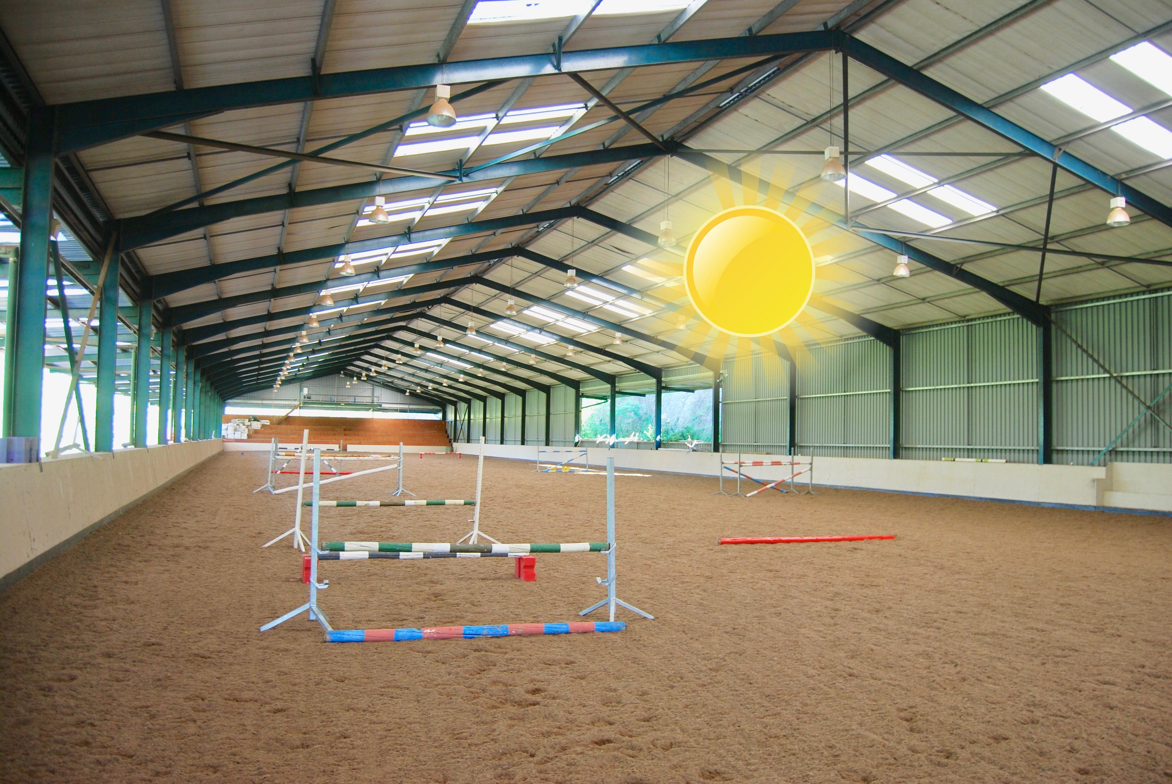 Indoor Arena: Daytime
