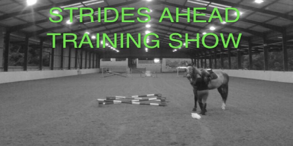 Strides Ahead Training Show (2)