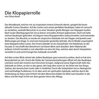 Projektbeschreibung_bk_klopapier_dilara.