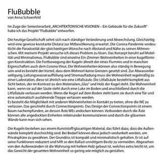 Projektbeschreibung_bk_flublubble_anna_0
