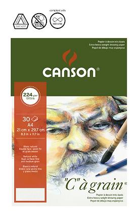 "Canson ""C.A grain"" A5 אילוסטריישן"