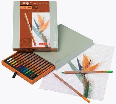 Bruyzeel סט 12 עפרונות צבעוניים