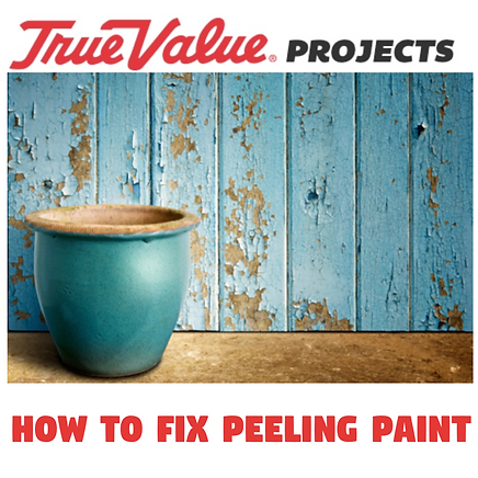 How to fix peeling paint project.PNG