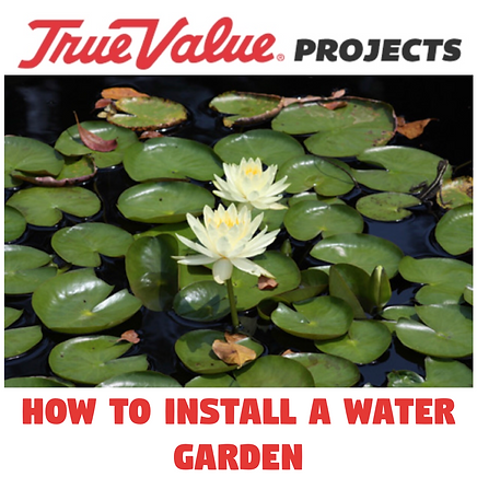 How to install a water garden.PNG