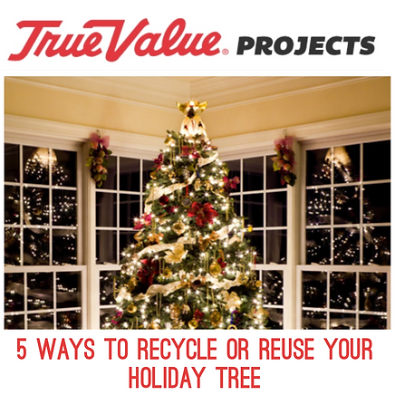 5 ways to recycle or reuse your holiday
