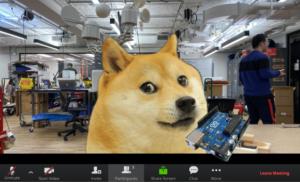 doge3