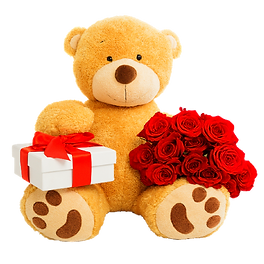 Teddy Bear gift-01.png