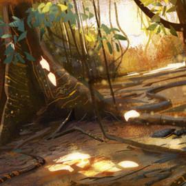 Wagadu Rainforest