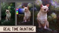 Pimpek Chihuahua