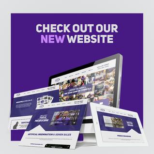 Website Launch For Social Media