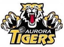 Aurora Tigers logo.JPG