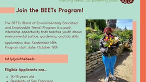 BEETs Paid Teen Internship [$16.32 an hour]