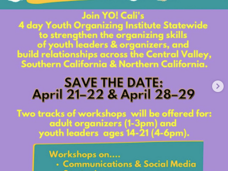 Virtual Youth Organizing Institute