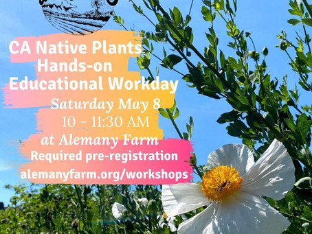 Gardening with California Native Plants on May 8