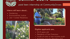 Summer BEETS - paid teen internship at Community Grows