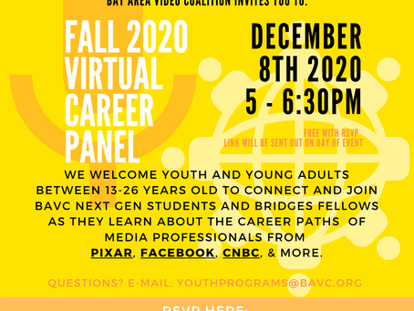 Fall 2020 Career Panel