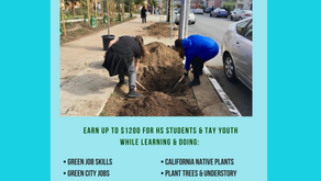 A.L.L. Green Futures Paid Internships for High School to Age 24 Youth
