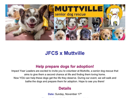 Upcoming JFCS Teen Volunteer Opportunity with Muttville
