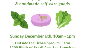 Plant & Holiday Sale