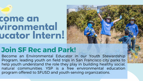 Become an Environmental Educator Intern!