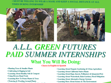 A.L.L. Green Futures Job Training Paid Internship opportunity for HS to Age 24