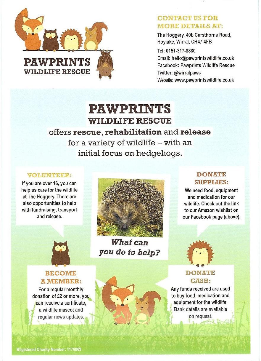 Pawprints leaflet.jpg
