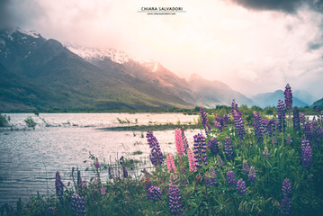 Glenorchy - New Zealand