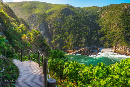 Tsitsikamma National Park - South Africa