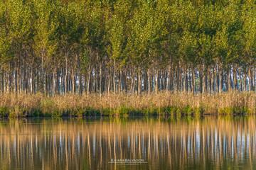 Candia Lake