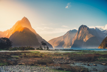 Milford Sound - South Island