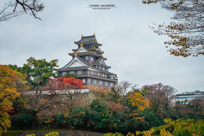 Okayama Castle - Chugoku
