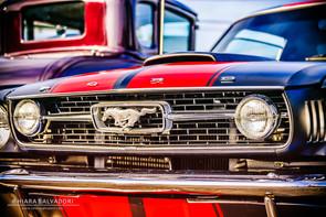 Mustang Coupè