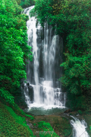 Waitanguru Falls - North Island