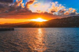Wellington - North Island