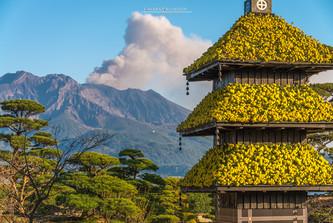 Kagoshima - Kyushu