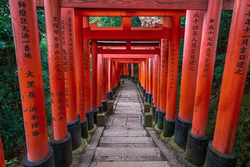 Fushimi-Inari Taisha - Kyoto