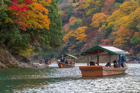 Katsura River - Kyoto